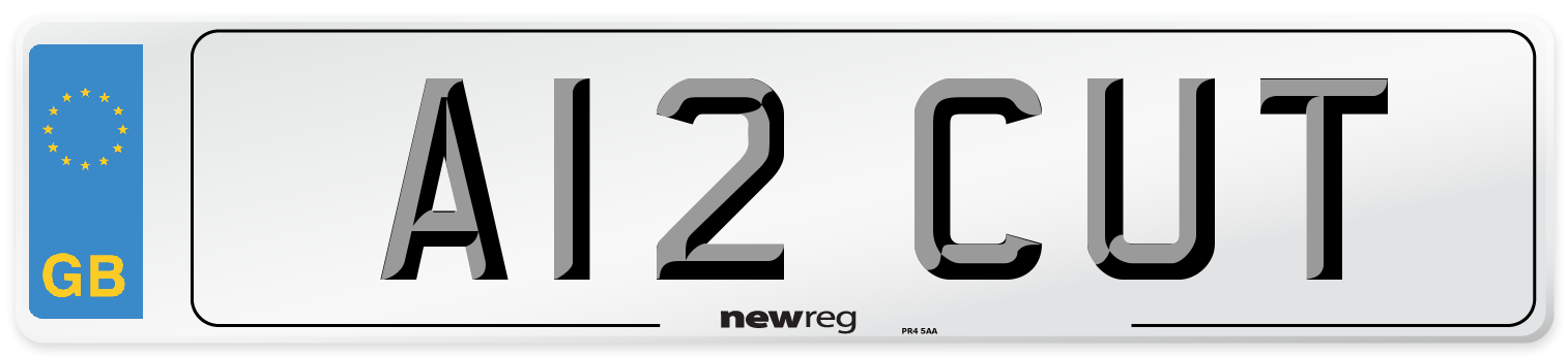 A12 CUT Number Plate from New Reg