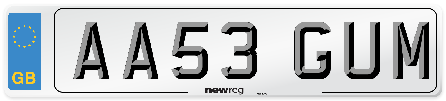 AA53 GUM Number Plate from New Reg