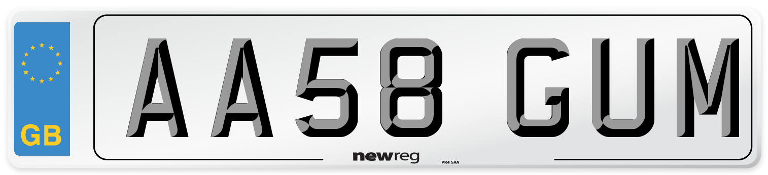 AA58 GUM Number Plate from New Reg