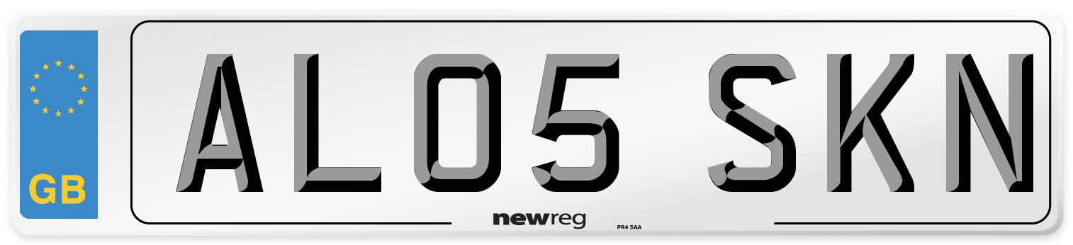 AL05 SKN Number Plate from New Reg