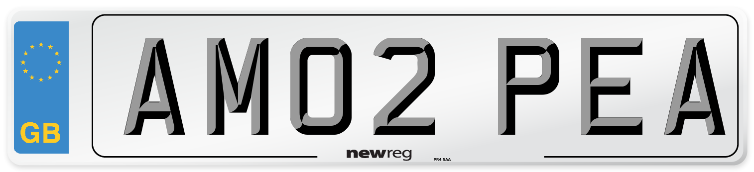 AM02 PEA Number Plate from New Reg