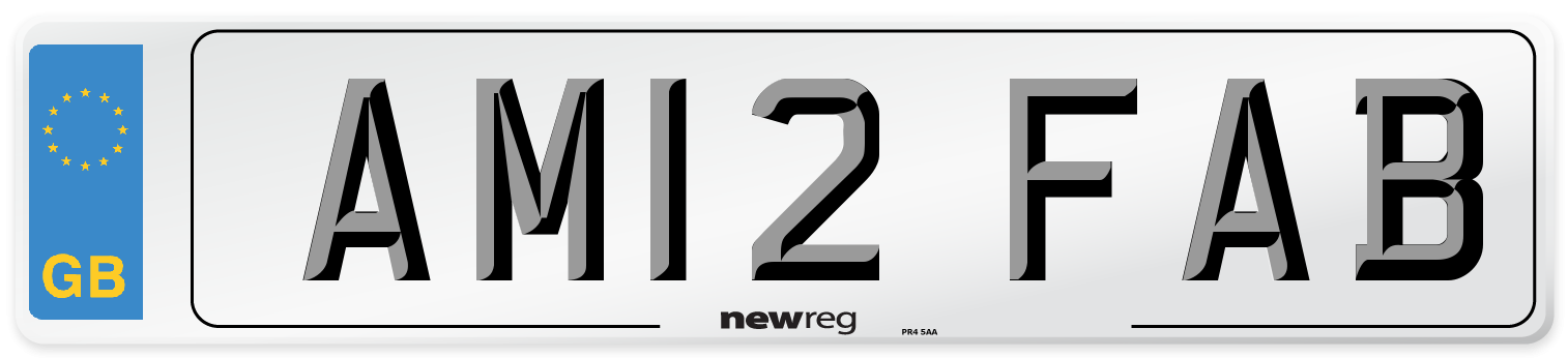 AM12 FAB Number Plate from New Reg