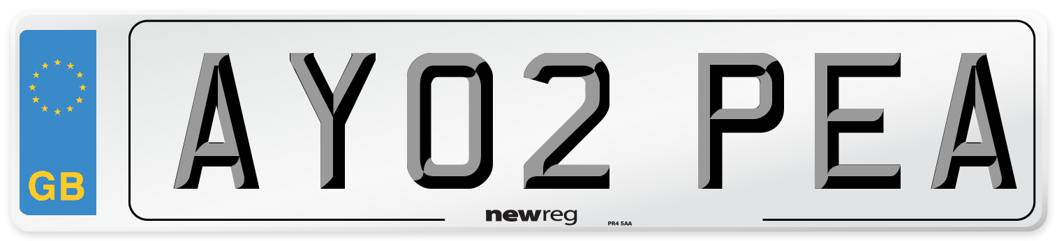 AY02 PEA Number Plate from New Reg