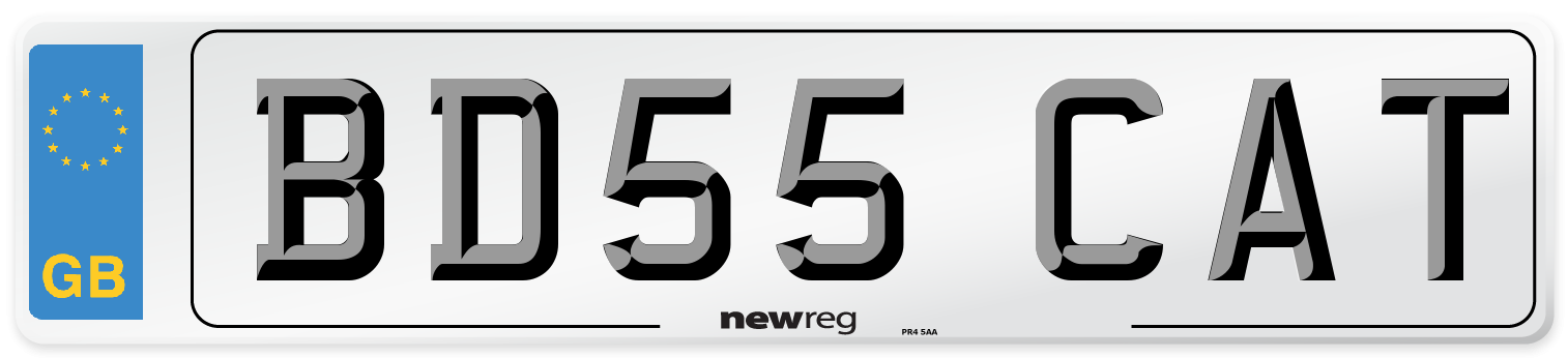 BD55 CAT Number Plate from New Reg