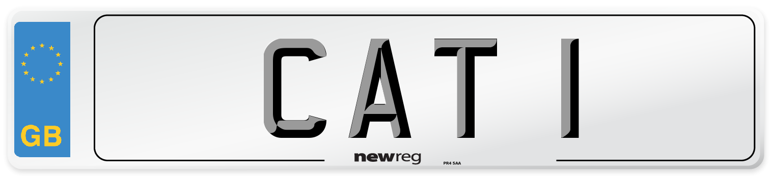 CAT 1 Number Plate from New Reg