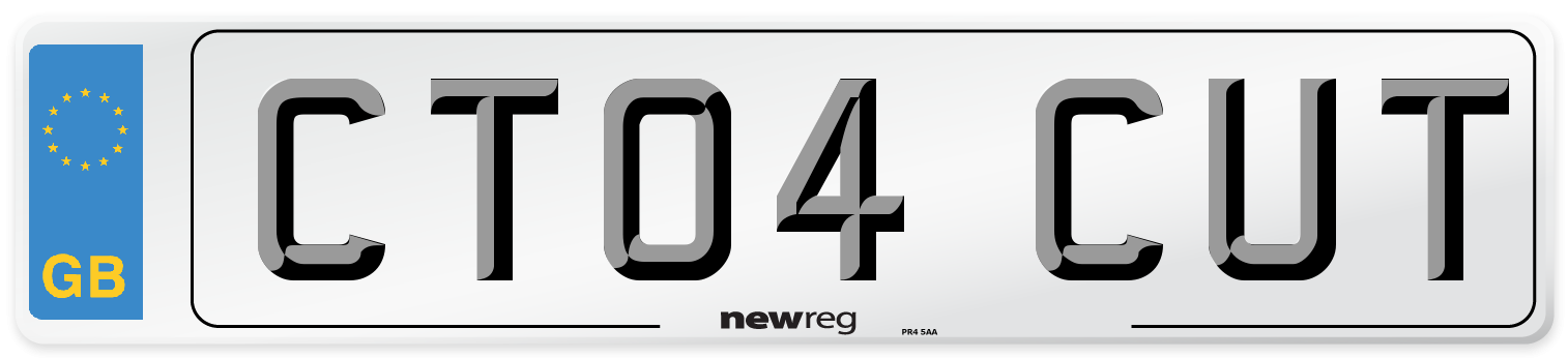 CT04 CUT Number Plate from New Reg