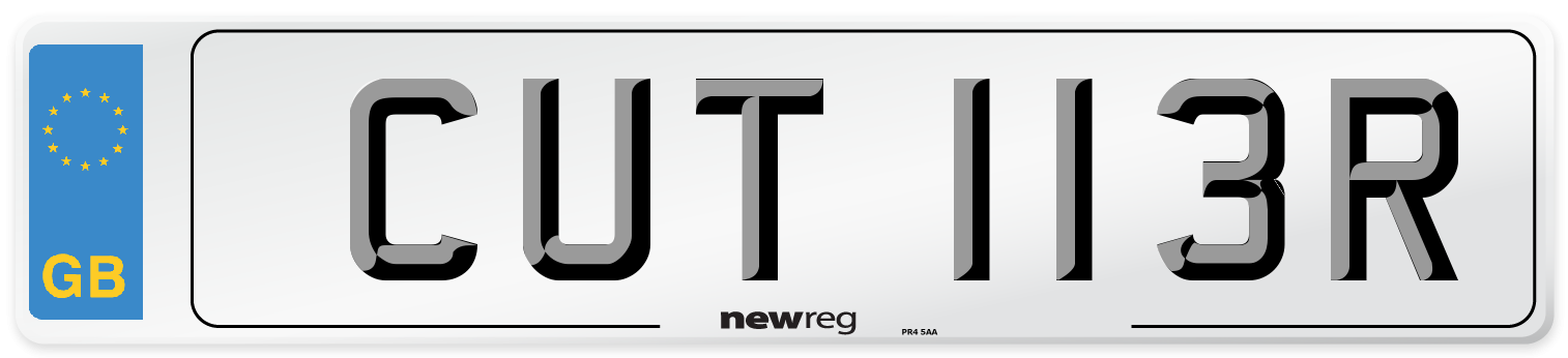 CUT 113R Number Plate from New Reg