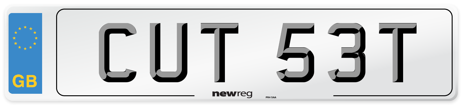 CUT 53T Number Plate from New Reg