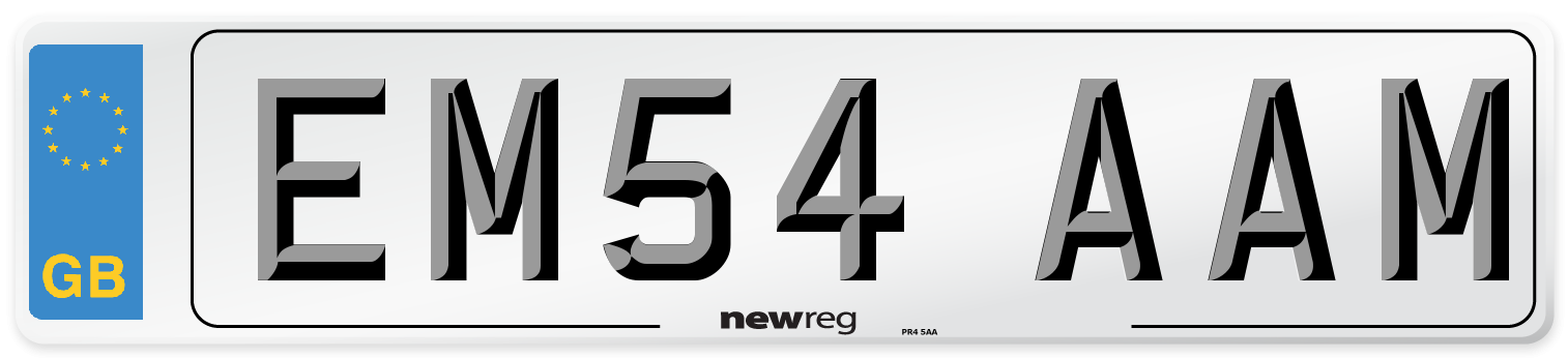 EM54 AAM Number Plate from New Reg