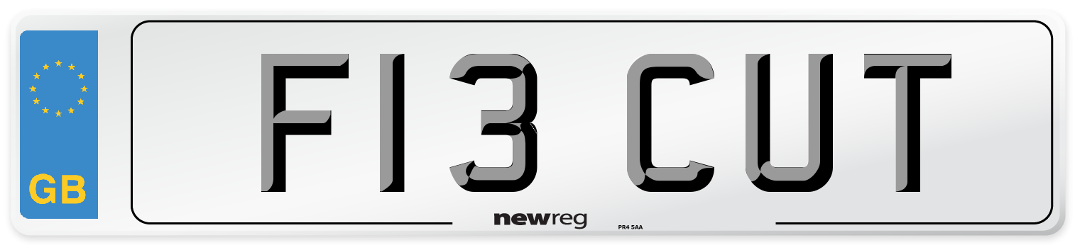 F13 CUT Number Plate from New Reg