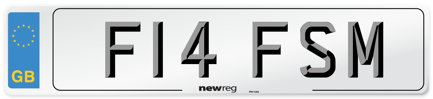 F14 FSM Number Plate from New Reg