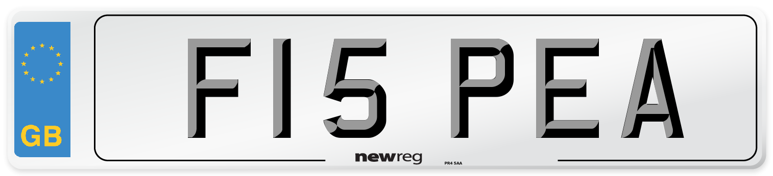 F15 PEA Number Plate from New Reg