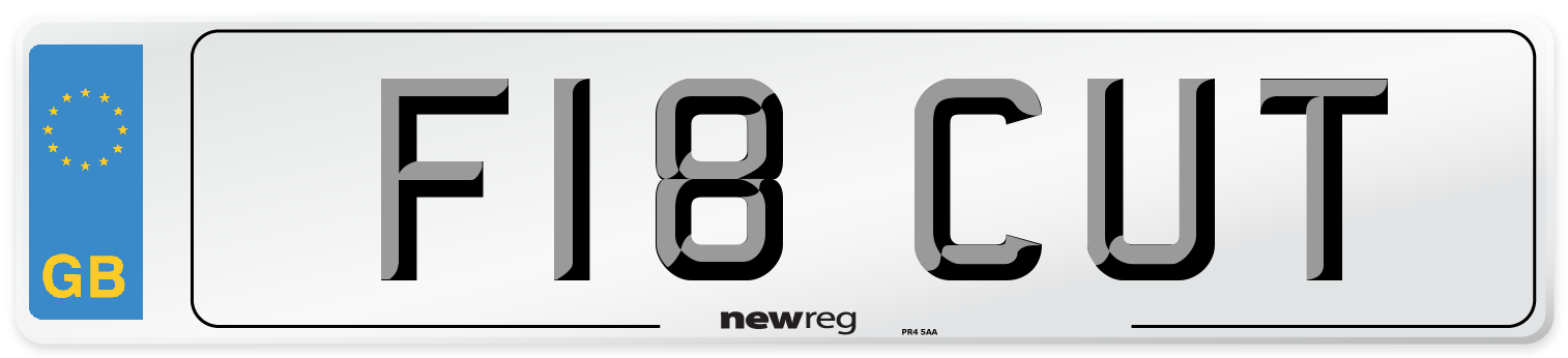 F18 CUT Number Plate from New Reg