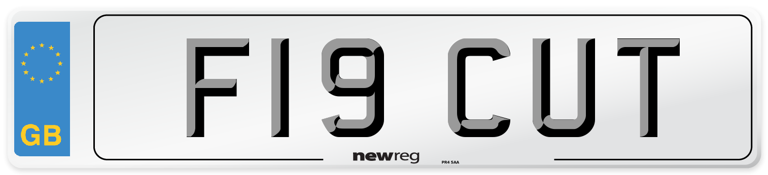 F19 CUT Number Plate from New Reg