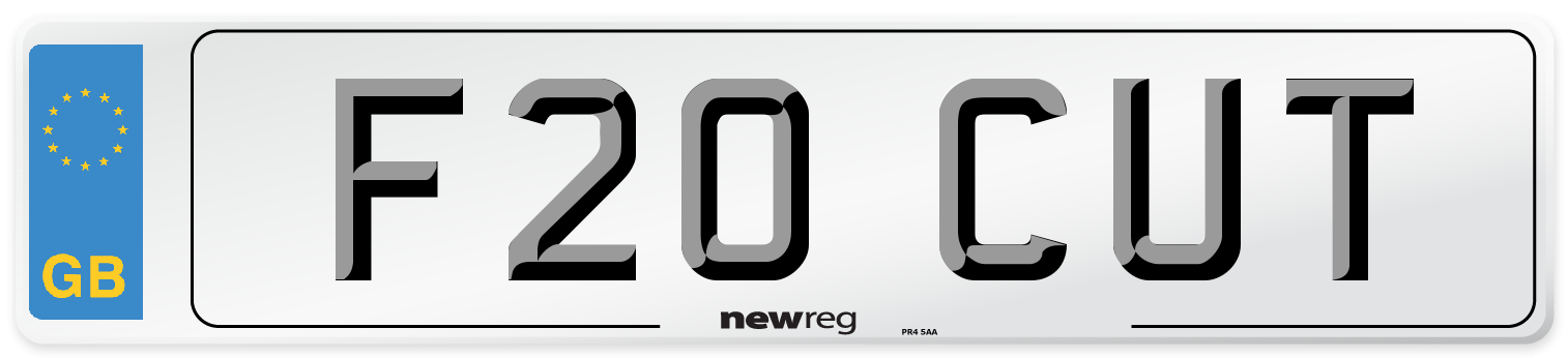 F20 CUT Number Plate from New Reg