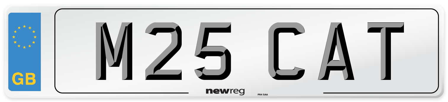 M25 CAT Number Plate from New Reg