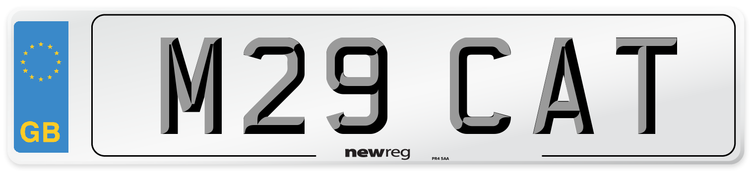 M29 CAT Number Plate from New Reg