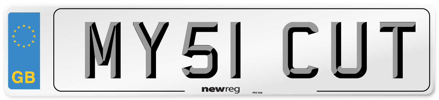 MY51 CUT Number Plate from New Reg