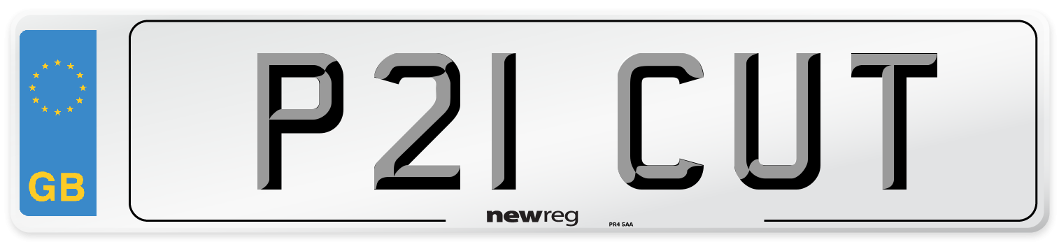 P21 CUT Number Plate from New Reg