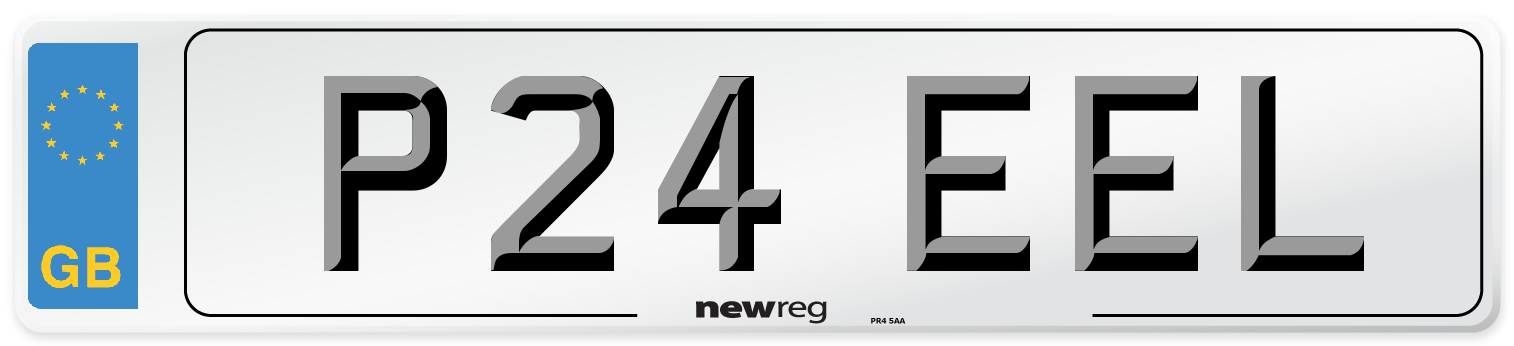 P24 EEL Number Plate from New Reg