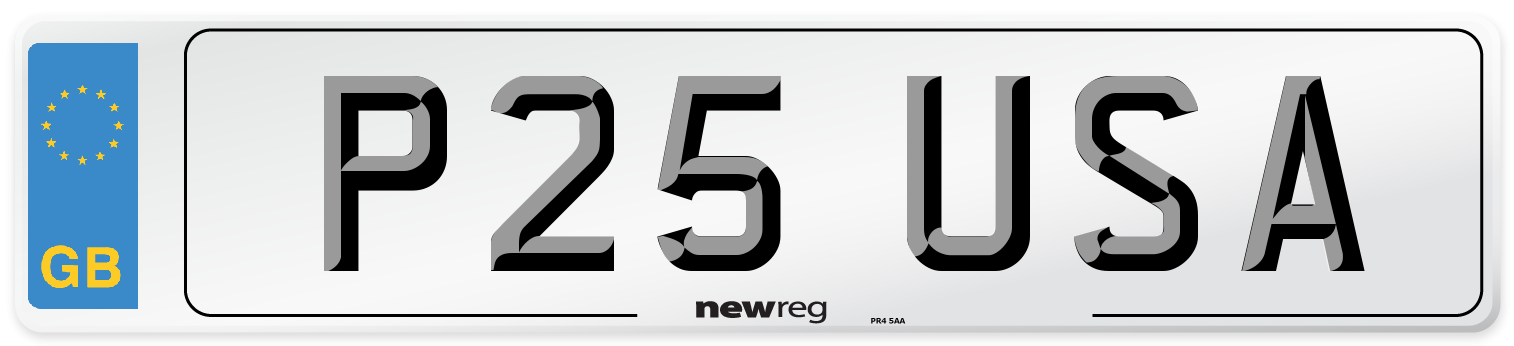 P25 USA Number Plate from New Reg