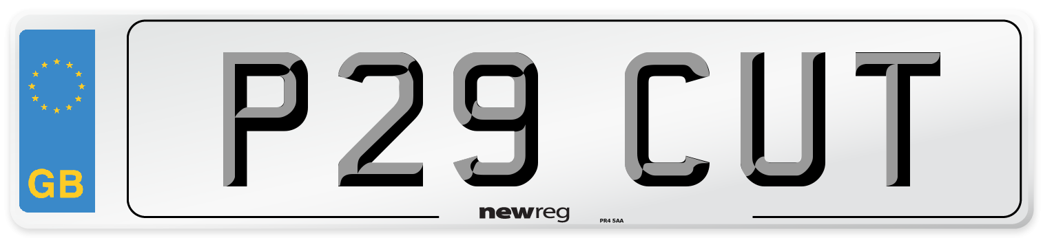 P29 CUT Number Plate from New Reg