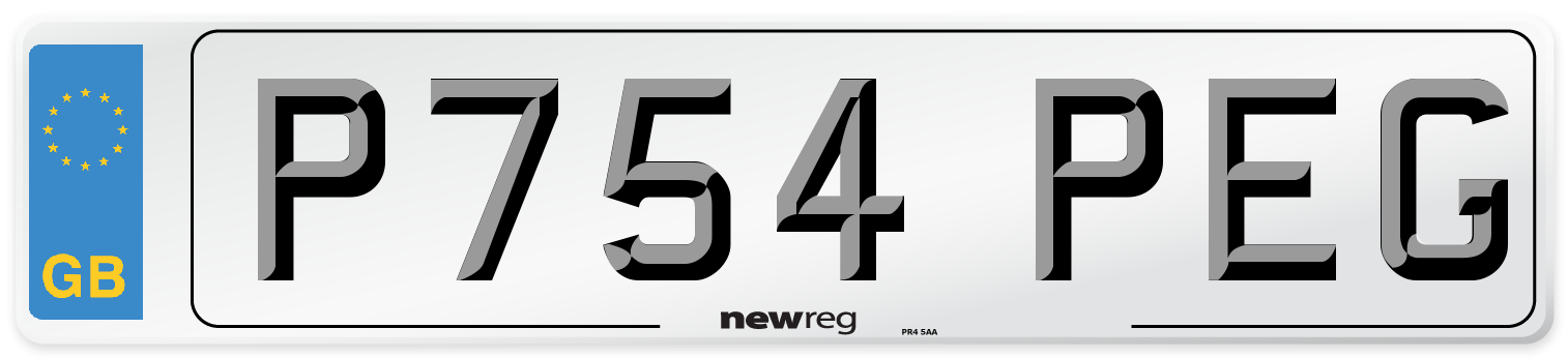 P754 PEG Number Plate from New Reg