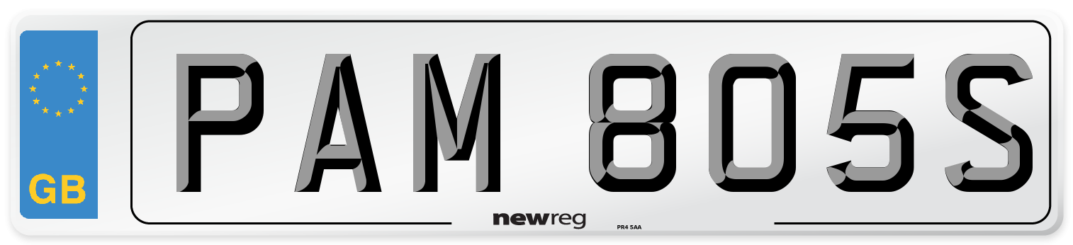 PAM 805S Number Plate from New Reg