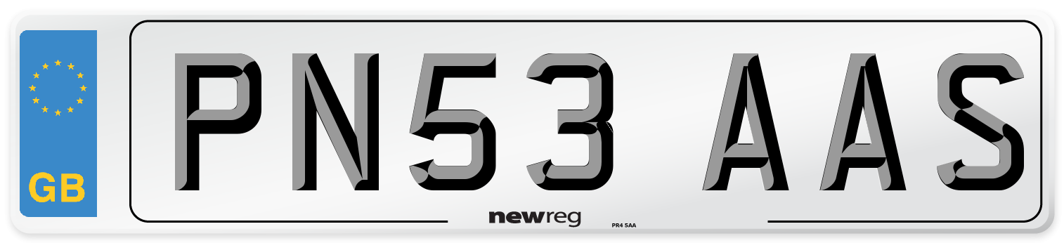 PN53 AAS Number Plate from New Reg