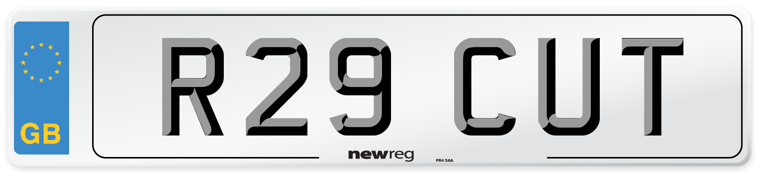 R29 CUT Number Plate from New Reg