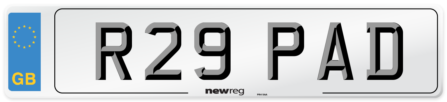 R29 PAD Number Plate from New Reg