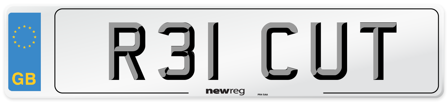 R31 CUT Number Plate from New Reg
