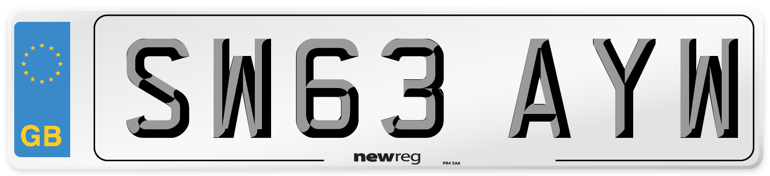 SW63 AYW Number Plate from New Reg
