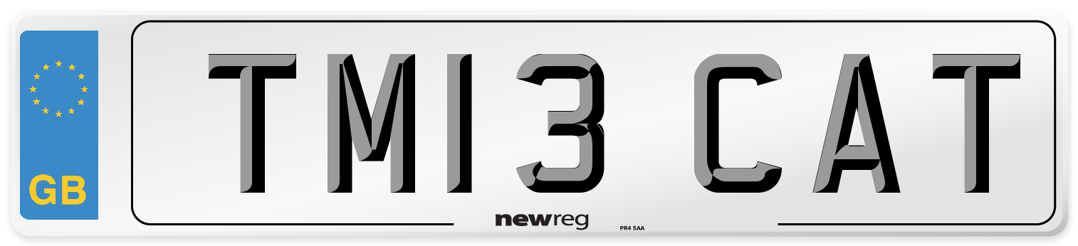 TM13 CAT Number Plate from New Reg