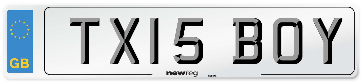 TX15 BOY Number Plate from New Reg