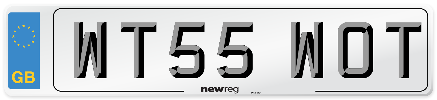 WT55 WOT Number Plate from New Reg