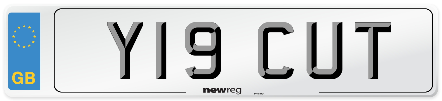 Y19 CUT Number Plate from New Reg