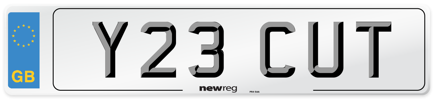 Y23 CUT Number Plate from New Reg