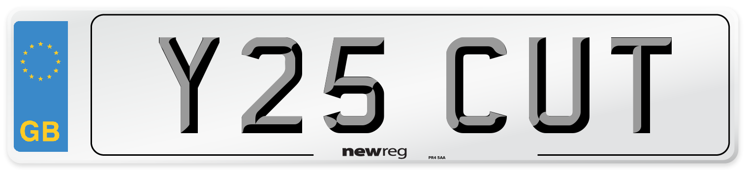 Y25 CUT Number Plate from New Reg
