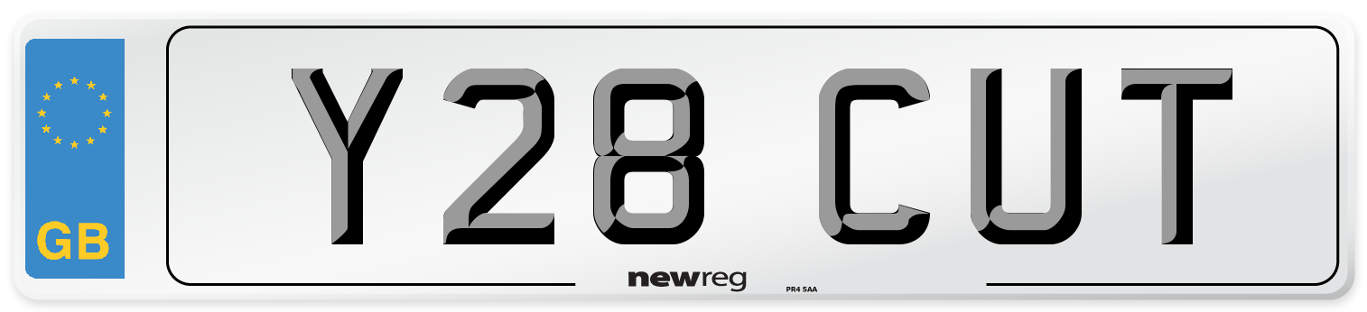 Y28 CUT Number Plate from New Reg